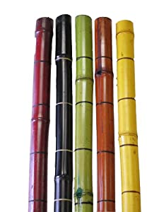 27 in. Tapered Floor Vase with 5 MIX Bamboo Poles