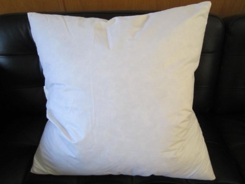 Buy Bargain Bed of Roses 16 X 16 95% Feather 5% Down Pillow Insert - Made in USA