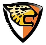 Jaguares De Chiapas - Mexico Football Soccer Futbol - Car Sticker - 4