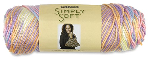 Bulk Buy: Caron Simply Soft Yarn Paints (2-pack) Baby Brights C97003-9801