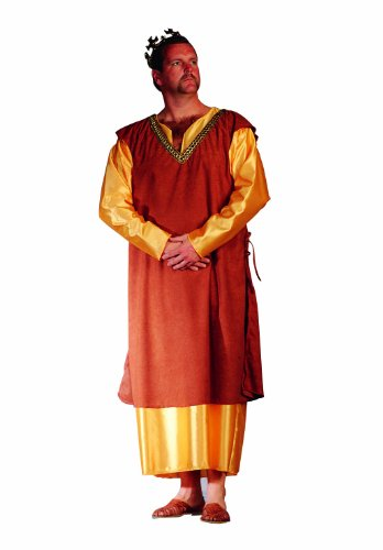 Medieval King Costume Plus Size