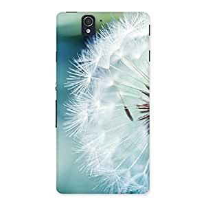 Ajay Enterprises Beautifull White Floral Back Case Cover for Sony Xperia Z