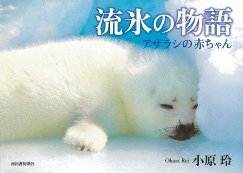 流氷の物語―アザラシの赤ちゃん