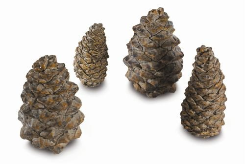 4 Assorted Sizes Designer Pine Cones (Gas Pine Cones compare prices)