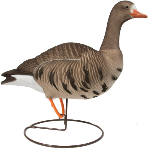 Final Approach Last Pass Hd Fully Flocked Speckle Belly Goose Upright Starter Decoys (Pack Of 6)