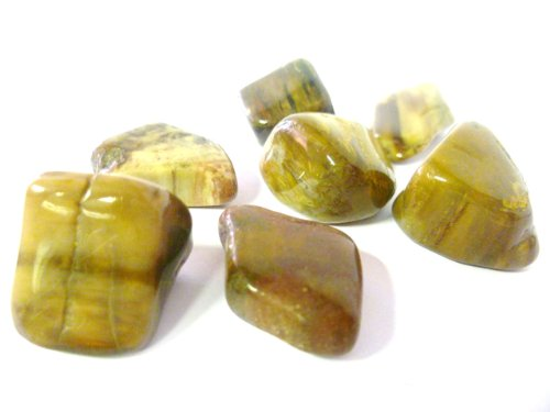 tumbled-petrified-wood-tumble-stone-a-grade-quality-crystal-made-from-ancient-healing-tree-a-very-gr