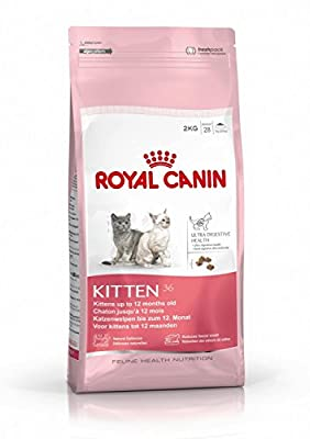 Royal Canin Kitten Food 36 Dry Mix