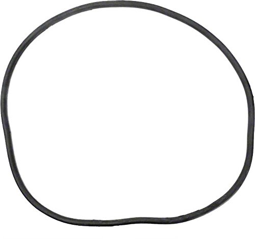 Pentair 27001 0061s Body O Ring For Tank Replacement For