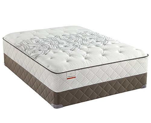 Queen Sealy Posturepedic Mattress back-1039614