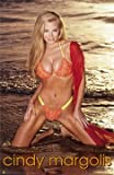 CINDY MARGOLIS POSTER - HOT SEXY NAKED BEACH POSE 24X36