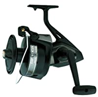 Daiwa Giant Sized Spinning Fresh or Saltwater Fishing Reel (Black) from Daiwa