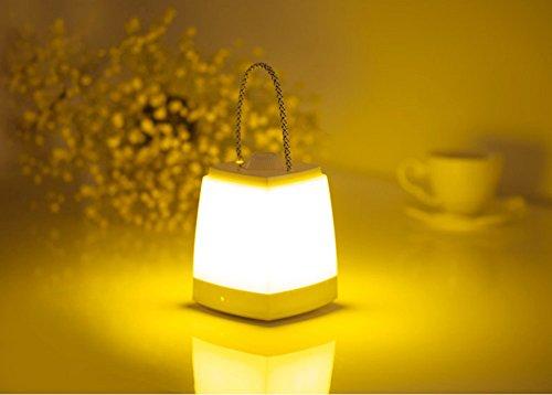 Welltop 高輝度 充電式 LEDデスクスタンド 提灯 自由調光 睡眠補助機能 タイミング 非常用/停電/緊急時 スイッチ付き 暖光 白光 テーブルランプ (暖光)