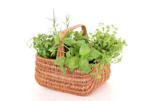 Basket of Herbs - 52