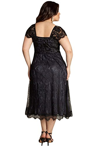 VIGVOG Women's Elegant Plus Size Lace Overlay A-line Dress for Party Evening (3XL, LC61268-2)