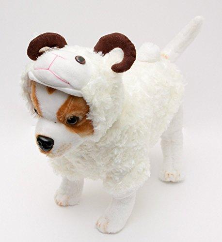 Sheep (Sheep Horn Costume)