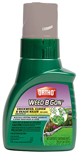 ortho-weed-b-gon-chickweed-clover-and-oxalis-killer-for-lawn-concentrate-16-ounce