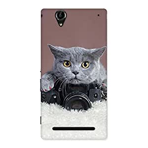 Special Kitty Photographer Multicolor Back Case Cover for Sony Xperia T2