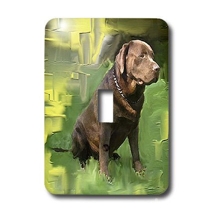 3dRose lsp_3987_1 Chocolate Labrador Retriever Single Toggle Switch