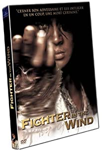 Fighter In The Wind