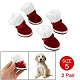 Côme chien Pet Chaussons