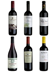Modern Collection Mixed Red Wine Dozen