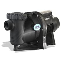 Hot Sale AquaPro APEX Series 1.25HP Variable Speed Energy Efficient Pool and Spa Pump