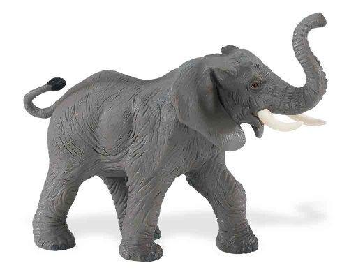 Safari: African Adult Elephant