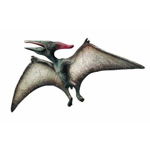 Pin dinosaure volant on pinterest - Dinosaur volant ...