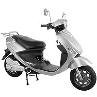 電動バイク ecolu MK シルバー シールドバッテリー モニターモデル MK-SL-M