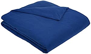 AmazonBasics Solid Lightweight Flannel Duvet Cover - Full/Queen, Cadet Blue