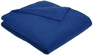 AmazonBasics Solid Lightweight Flannel Duvet Cover - Full/Queen, Cadet Blue