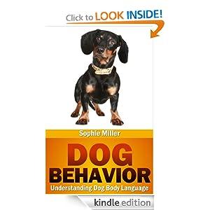 Understanding dog behavior body language