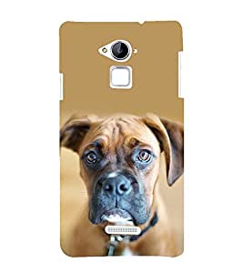 printtech Nature Animal Dog Back Case Cover for Coolpad Note 3