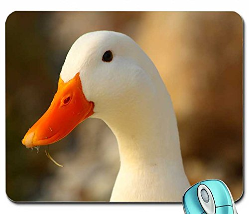 animals-aflac-duck-1680x1120-wallpaper-mouse-pad-computer-mousepad