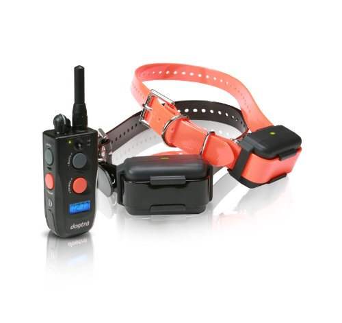 Dogtra Fieldstar Remote Training Collar