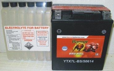 batterie ytx14 bs pas cher