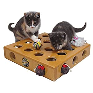 SmartCat 3833 Peek-a-Prize Pet Toy Box