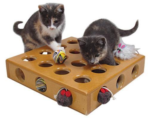 SmartCat 3833 Peek-a-Prize Pet Toy Box