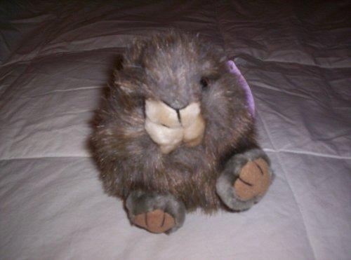 "Puffkins Squirrel ""Nutty"" Plush - 1"