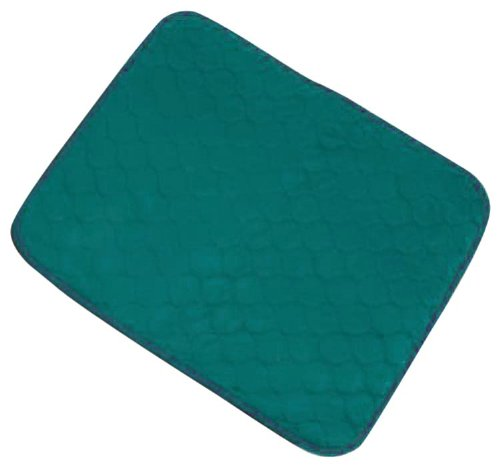 Incontinence Protection Chair Pad - Green