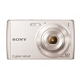 Sony Cyber-Shot DSC-W510 12.1 MP Digital Still Camera with 4x Wide-Angle Optical Zoom Lens and 2.7-inch LCD (Silver)
