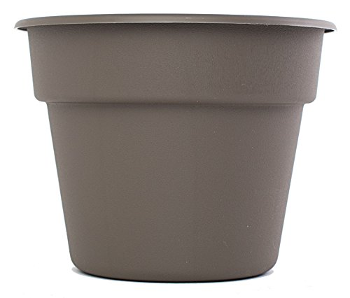 Bloem DC14-60 Dura Cotta Planter, 14-Inch, Peppercorn