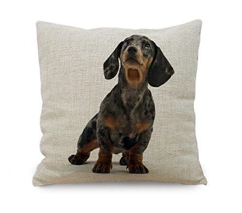yinggouen-dog-looking-in-sky-dekorieren-fur-ein-sofa-kissenbezug-kissen-45-x-45-cm