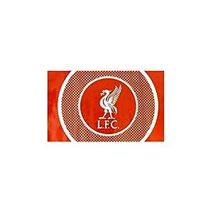 Liverpool S Flag