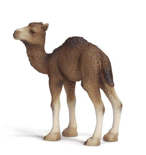 Buy Low Price Schleich Dromedary Foal Figure (B000H6FGZ6)