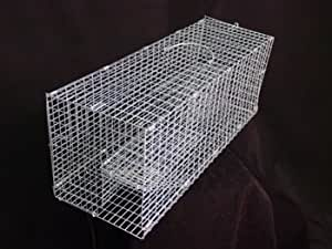 Large Double Door Rodent Trap with Extra Holding Capacity Squirrel Rat
