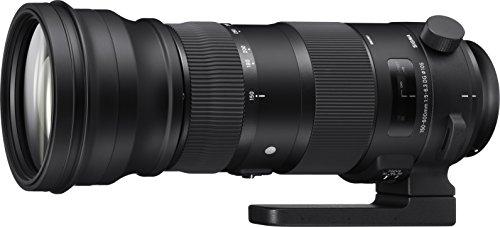 SIGMA 超望遠ズームレンズ Sports 150-600mm F5-6.3 DG OS HSM ニコン用 フルサイズ対応 740559
