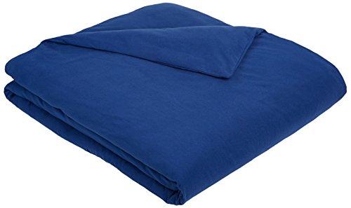 AmazonBasics Solid Lightweight Flannel Duvet Cover - Twin, Cadet Blue (Flannel Duvet Cover Twin compare prices)