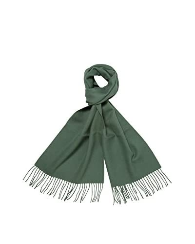 a & R Cashmere Women's Baby Alpaca Solid Scarf, Lake Green