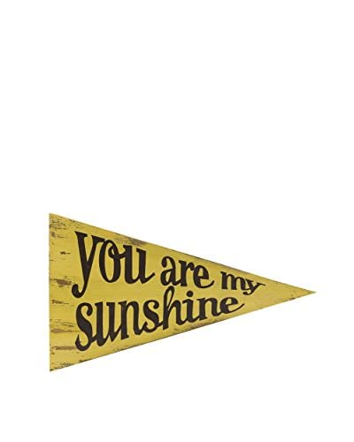 You Are My Sunshine Sign Pennant